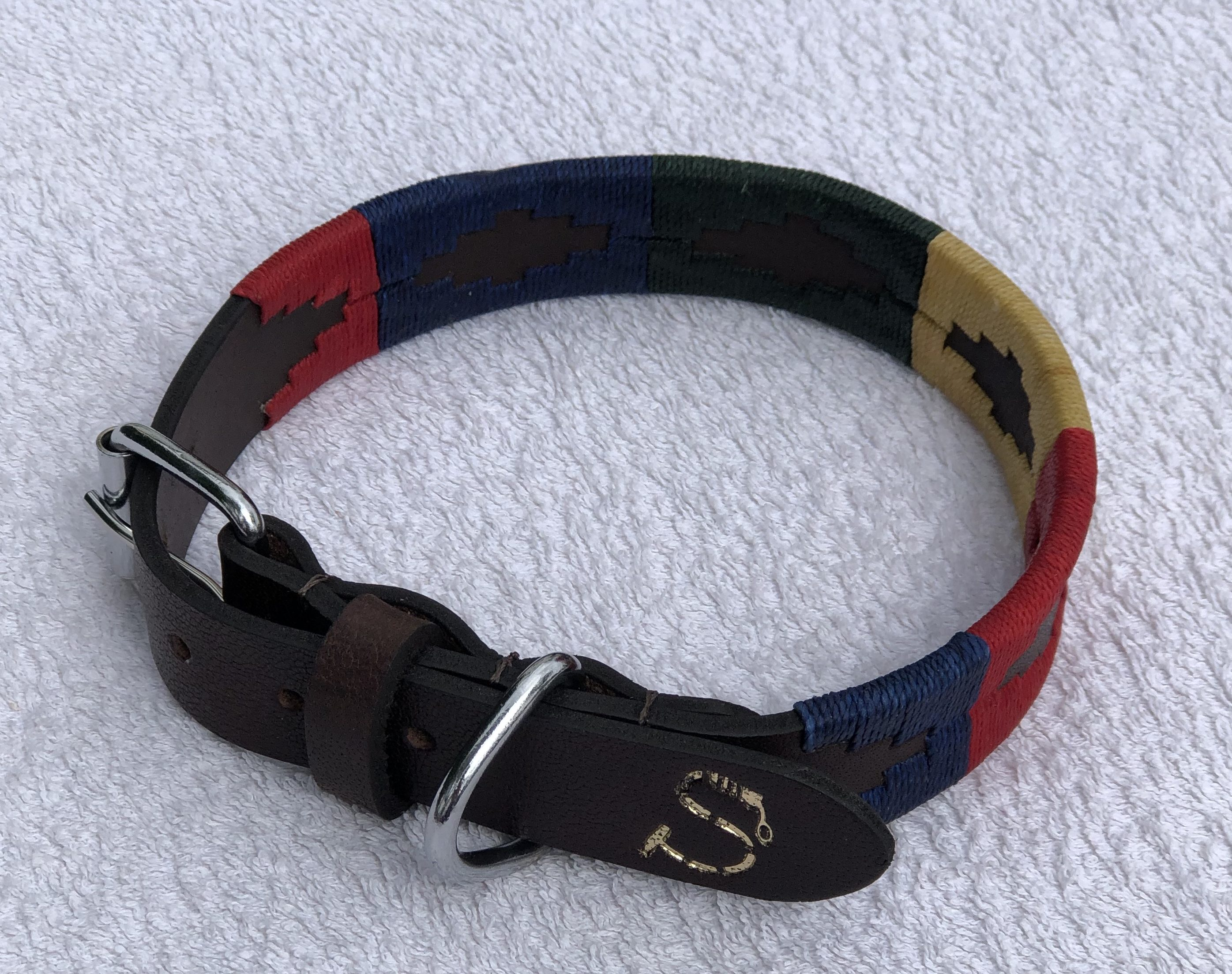 Ollie Dog Collar